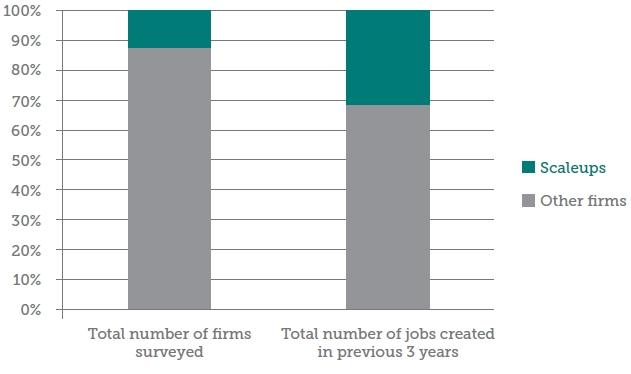 Scaleup Firms in Peru