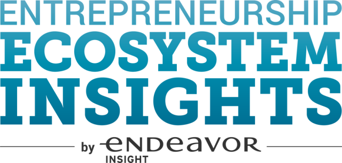 Entrepreneurship Ecosystem Insights
